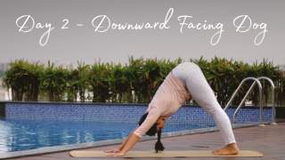Day 2 - Downward Dog  Fifteen days of Yoga for Beginners