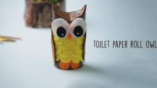 How to make a Paper Owl  Toilet Roll Craft