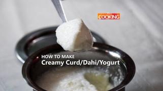 Creamy Curd / Dahi / Yogurt